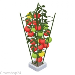 PLANT SUPPORT 90CM